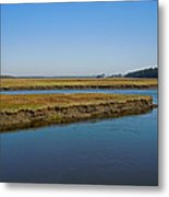 Marsh In Maine Metal Print