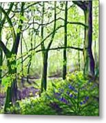 Marsh Marigolds And Bluebells Metal Print