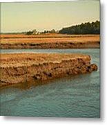 Marsh Of Pine Point Metal Print