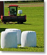 Marshmallows - They're Ripe Metal Print
