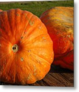 Mass Pumpkins Metal Print