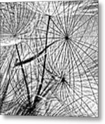Matrix Monochrome Metal Print