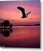 Mauve Sundown Eagle  Metal Print