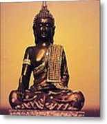 May You Find Peace Metal Print