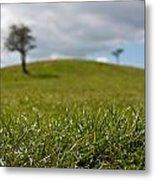 Meadow Metal Print by Semmick Photo