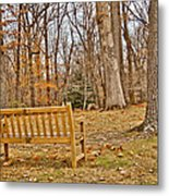 Meditation At Valley Forge Metal Print