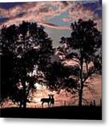 Meeting In The Sunset Metal Print