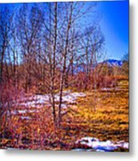 Melting Snow In South Platte Park Metal Print