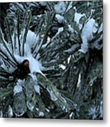 Memories In Ice Metal Print by Yvonne Scott