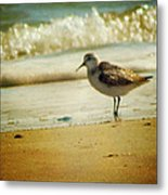 Memories Of Summer Metal Print