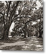 Memory Lane Monochrome Metal Print by Steve Harrington