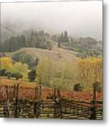 Mendocino In Autumn Metal Print by Denice Breaux