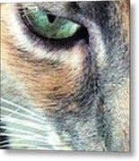 Meow Meow Metal Print by Tia Anderson-Esguerra