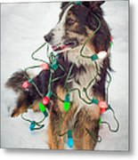Merry Merry Bark Bark Metal Print