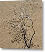 Message In The Sand Metal Print