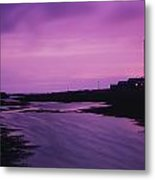 Mew Island, Belfast Lough, County Down Metal Print
