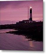 Mew Island, Belfast Lough, County Metal Print