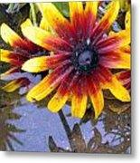 Mexican Sunflower Metal Print