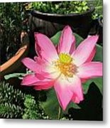 Michele Bowl Lotus Metal Print