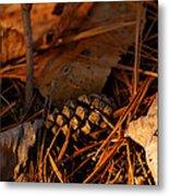 Michigan Golden Sunset Pine Cone Metal Print