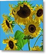 Mid Summer Dreams Metal Print