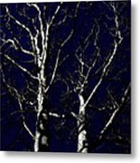 Midnight Blue Metal Print