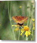 Migrating Butterfly Ser2 Metal Print