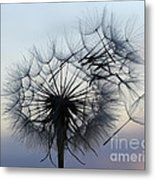 Wind Blown 1 Metal Print