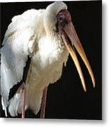 Milky Stork Metal Print