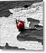 Miss Red Metal Print