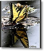 Missing You - Butterfly Metal Print