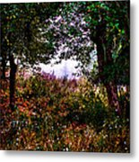 Mist Beyond The Apple Trees Metal Print