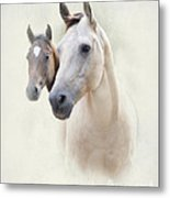 Misty Metal Print by Betty LaRue
