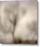 Misty Dreams Metal Print
