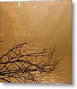 Misty Sunbeams Metal Print