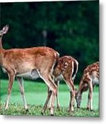 Mom With Twins Metal Print