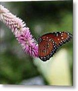 Monarch And Lavender Metal Print