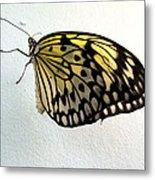 Monarch Butterflie Metal Print by Joyce Woodhouse