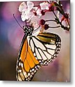 Monarch On A Flower Metal Print