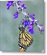 Monarch On Purple Metal Print