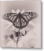 Monarch On Sunflower Metal Print