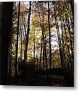 Mono Cliffs Trees Metal Print