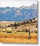 Montana Farm9404 Metal Print
