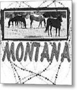 Montana Horse Design Metal Print
