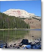Montana100 0883 Metal Print