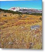 Montana100 0885  Metal Print