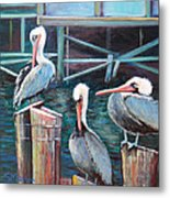 Monterey Pelicans Metal Print