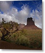 Monument Valley Vista Metal Print