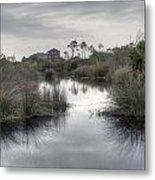 Moody Marsh Metal Print