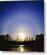 Moon Dog Metal Print